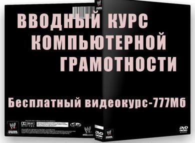 box_vvodnyj-kurs